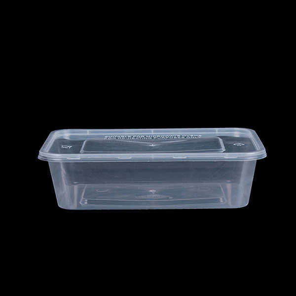 650ml PP Plastic Rectangle Box