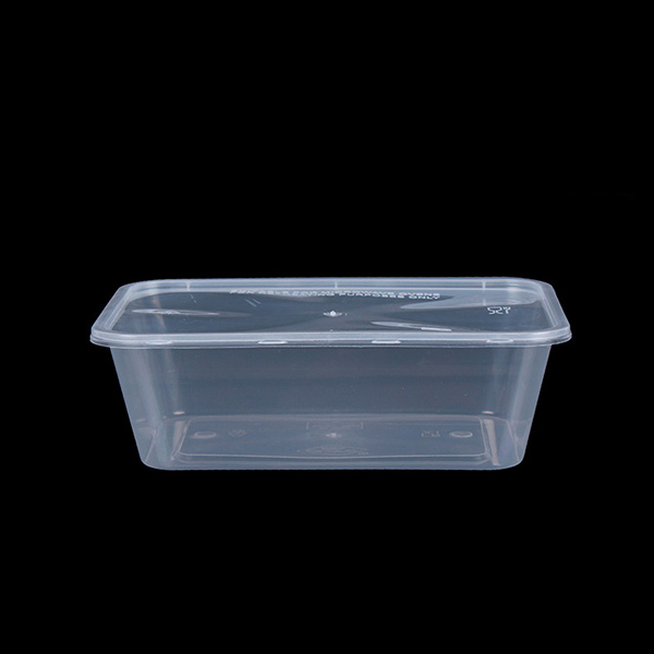 750ml PP Plastic Rectangle Box