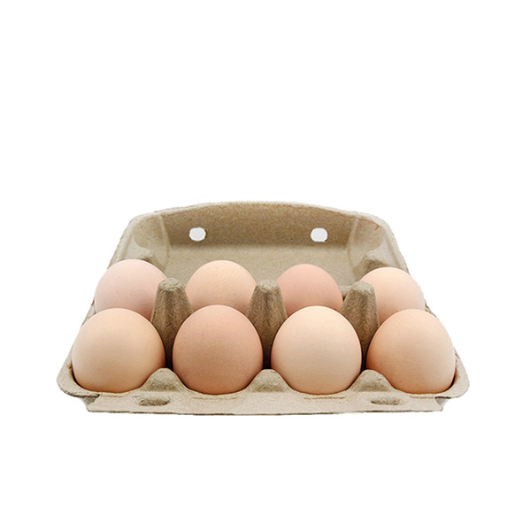 Customized Paper Eggs Tray
